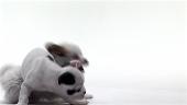 ロイヤリティフリー動画