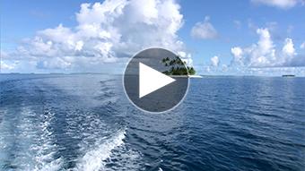 環境映像ジープ島イメージ