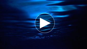 環境映像サイパンとガラパゴスイメージ