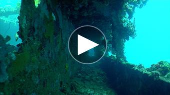 環境映像沈船イメージ