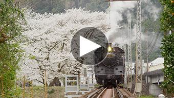 環境映像電車イメージ