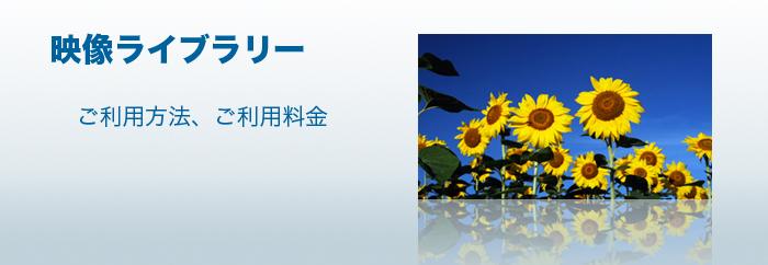 4K・ハイビジョン映像イメージ